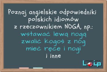Angielskie tłumaczenia polskich kolokacji z rzeczownikiem NOGA